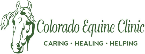 Colorado Equine Clinic Logo