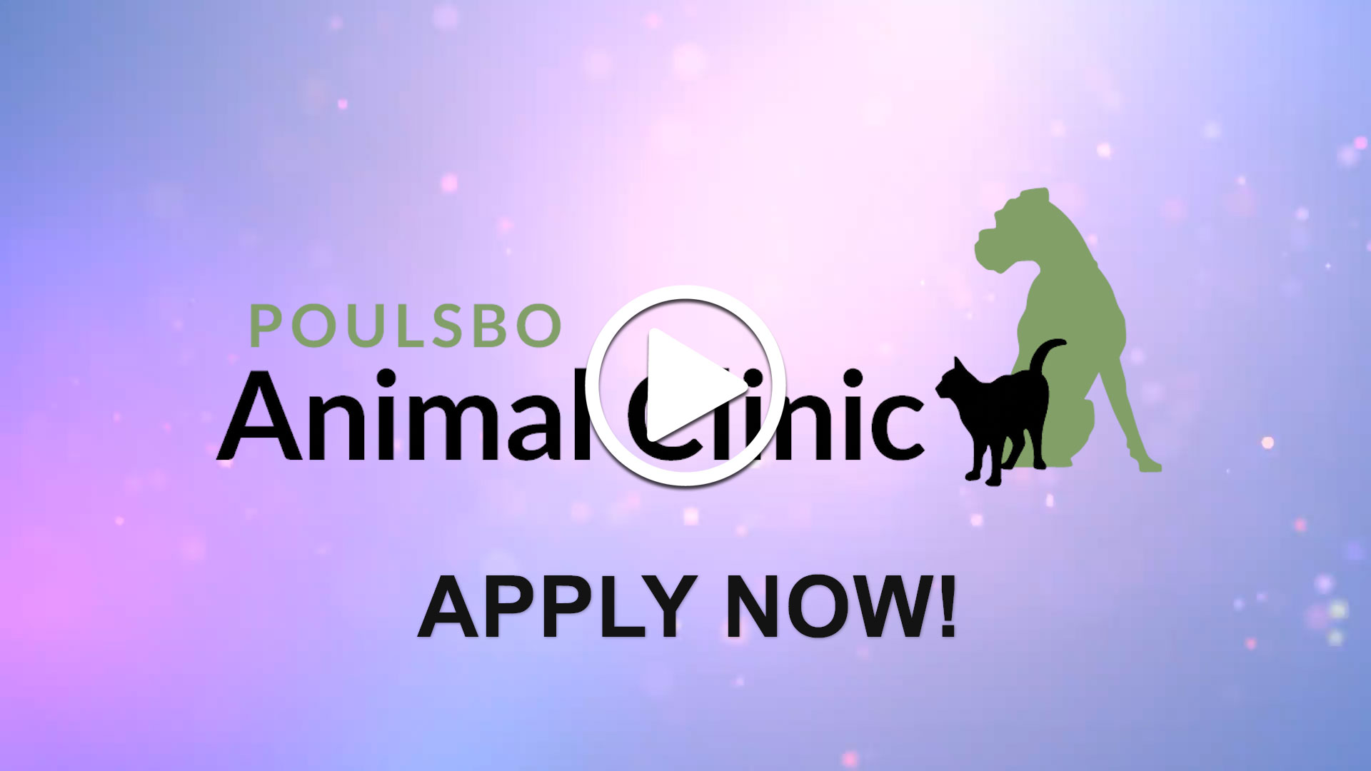 Watch our careers video for available job opening Full-Time Veterinarian for Busy Small Animal Practice in Western Washington in Poulsbo, WA, USA