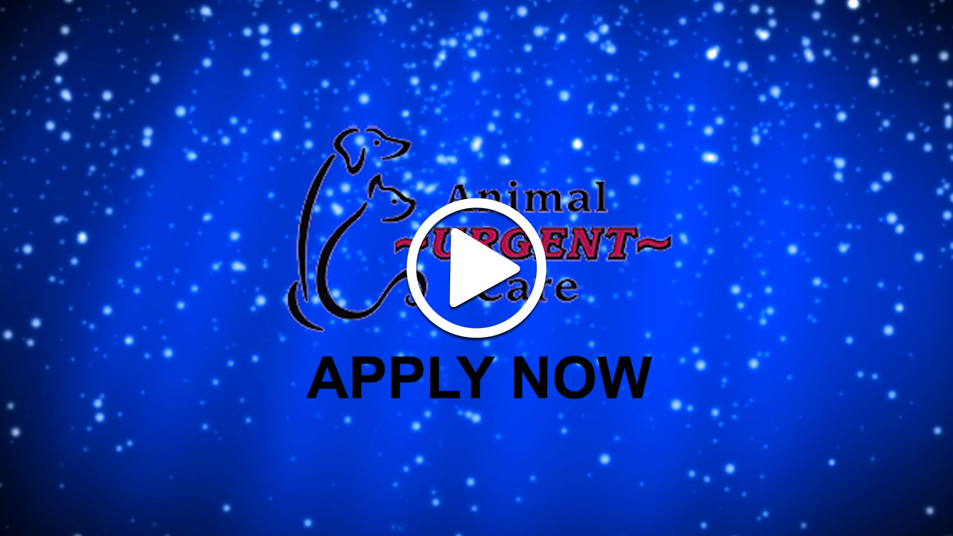 Watch our careers video for available job opening Full Time, Part Time, or Relief ER Veterinarian in Arvada, Colorado
