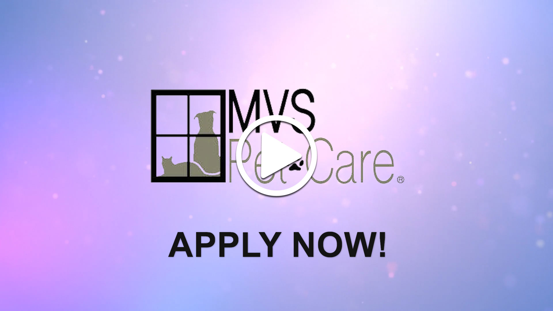 Watch our careers video for available job opening Full Time Veterinarian in Pittsburgh, Pennsylvania