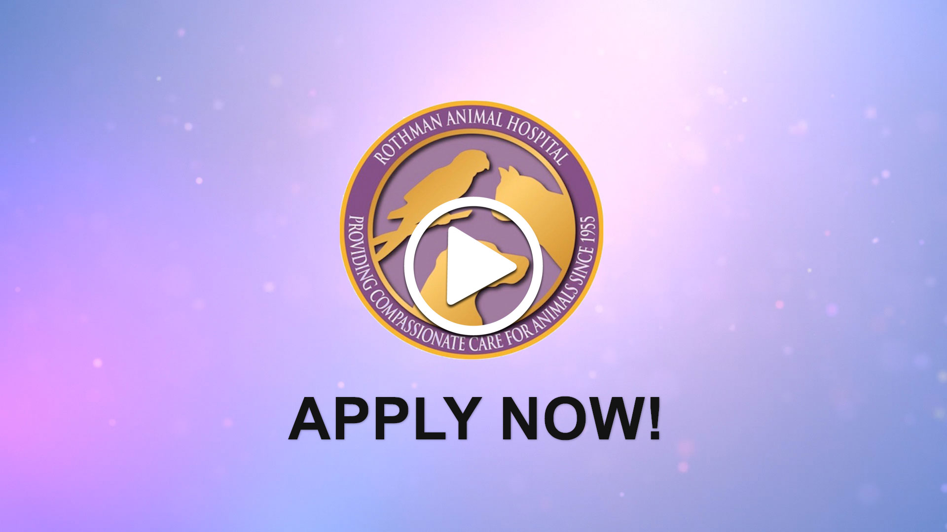 Watch our careers video for available job opening Associate Veterinarian in Collingswood, New Jersey