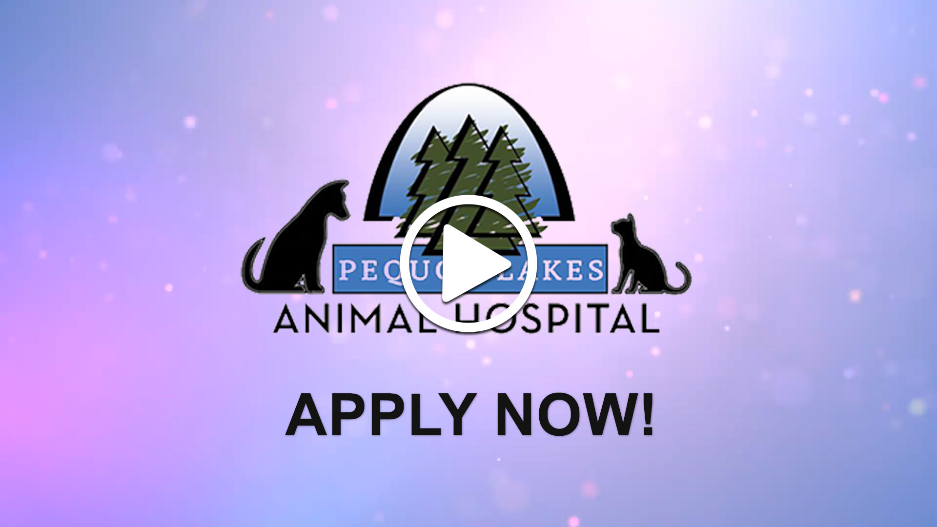 Watch our careers video for available job opening Veterinarians Looking for a Great Opportunity in Pequot Lakes, Minnesota