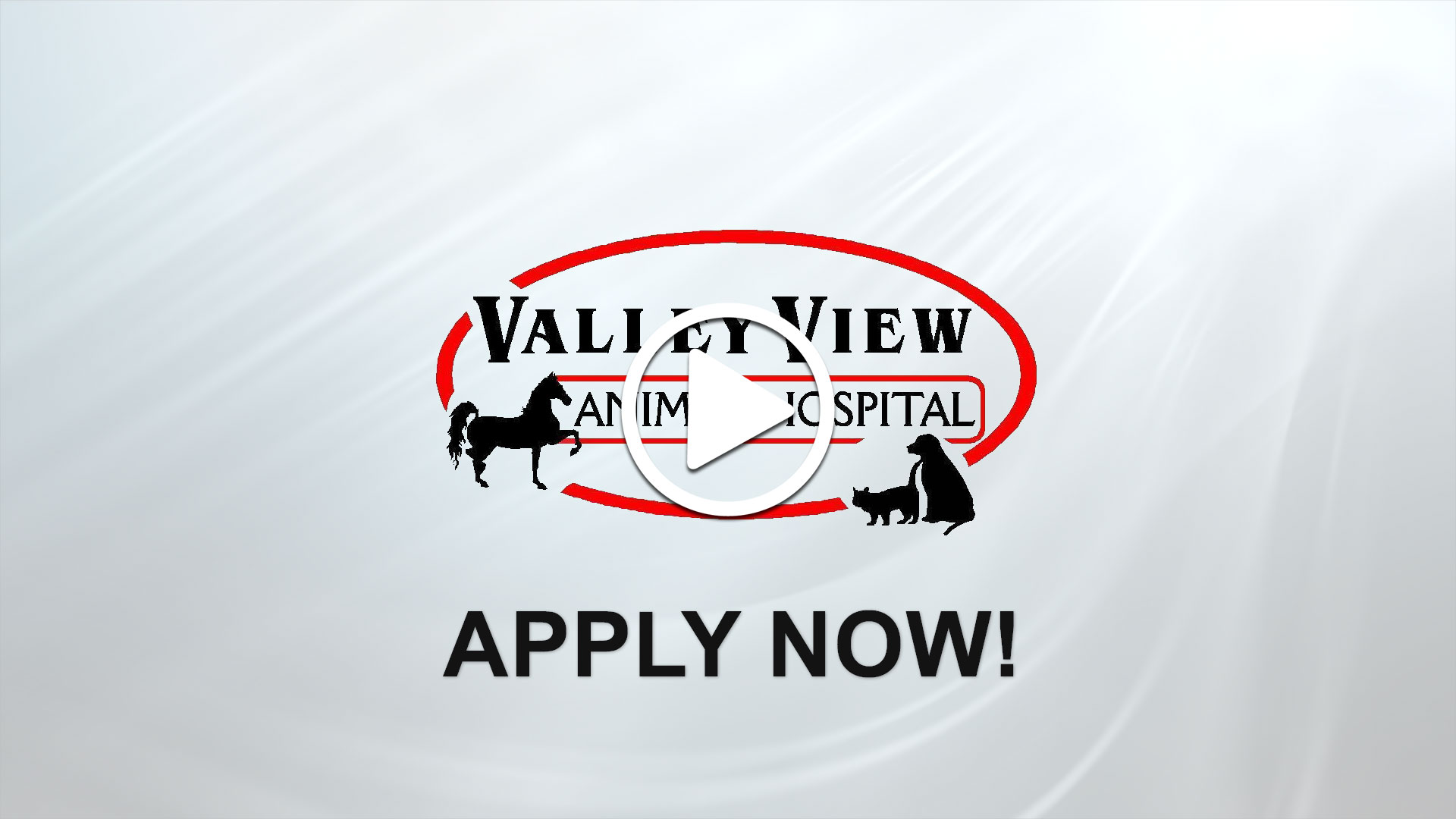 Watch our careers video for available job opening Full Time Small Animal Veterinarian in Northeast Ohio in Dover, Ohio