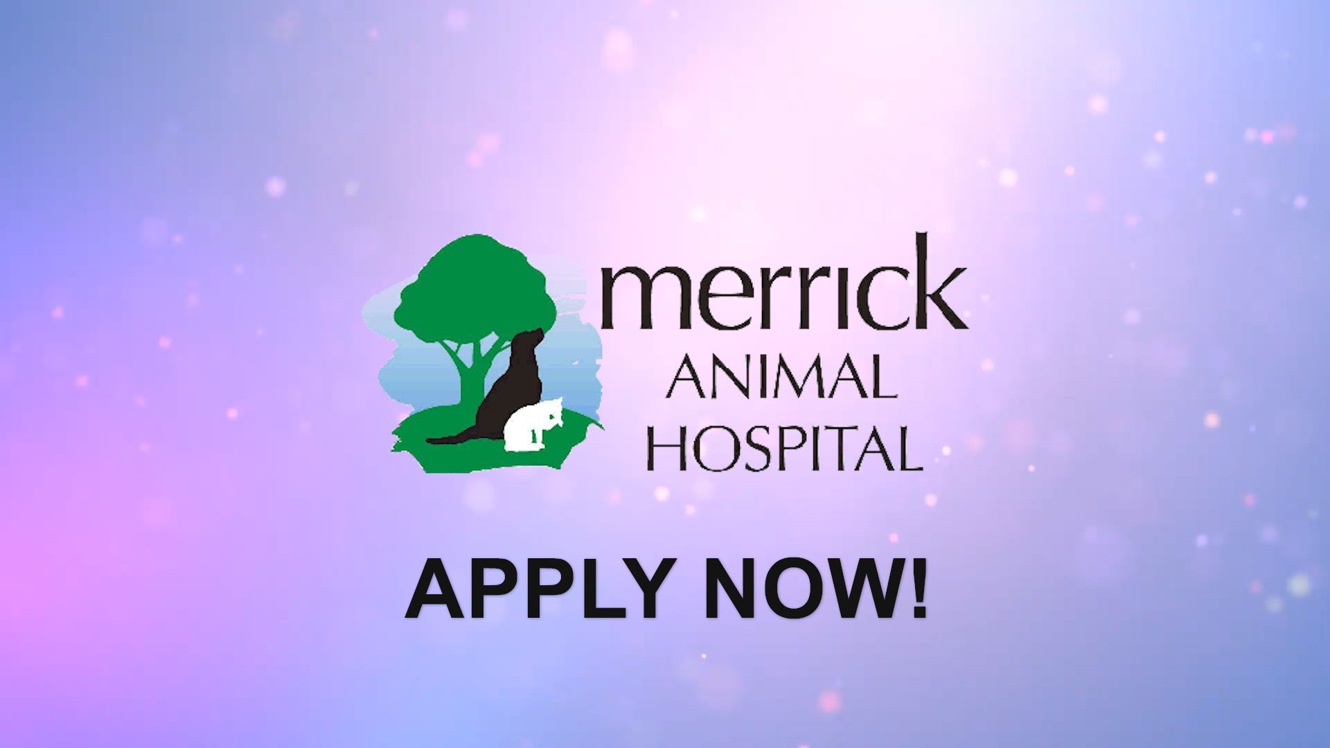 Watch our careers video for available job opening Associate Veterinarian in Western Chicago Suburb in Brookfield, IL.  USA