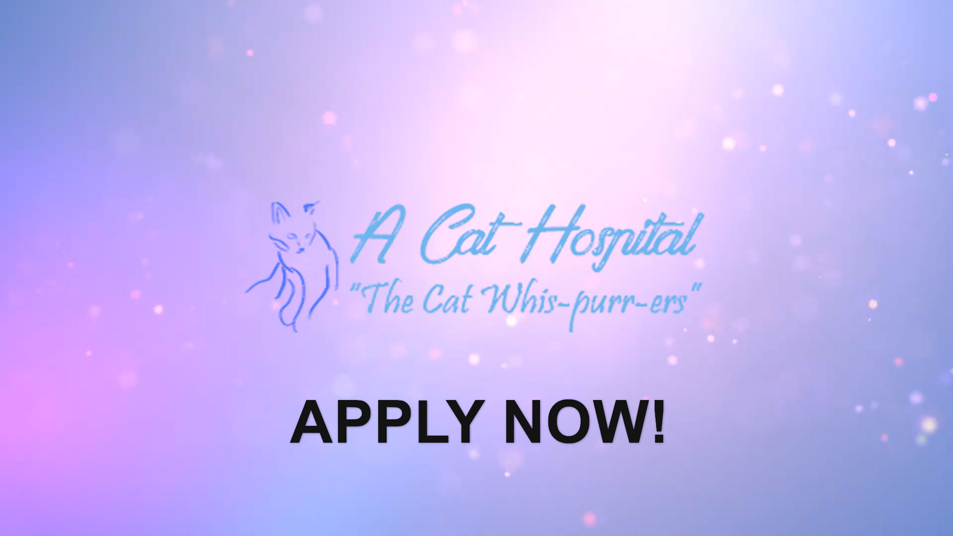 Watch our careers video for available job opening Veterinarian for Feline Hospital in Henderson, Nevada.  USA