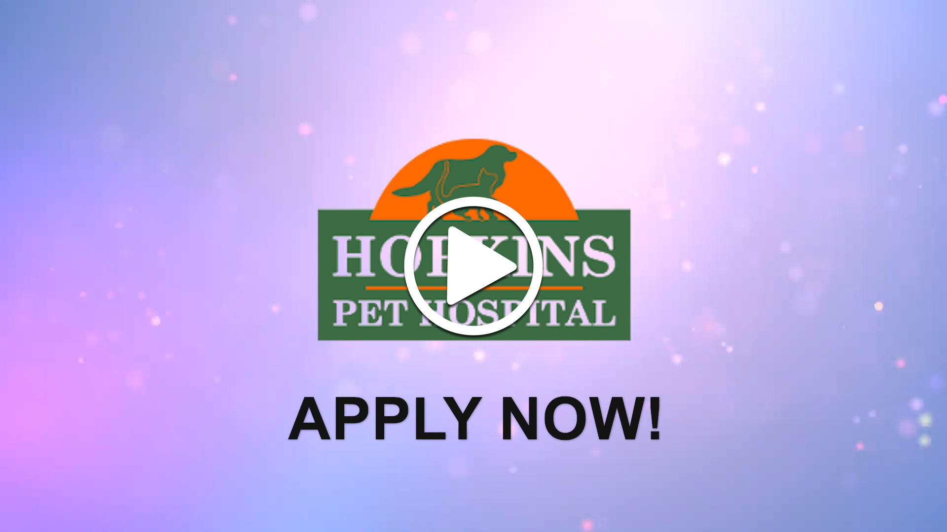 Watch our careers video for available job opening Veterinarian Fulltime in Hopkins, MN, USA