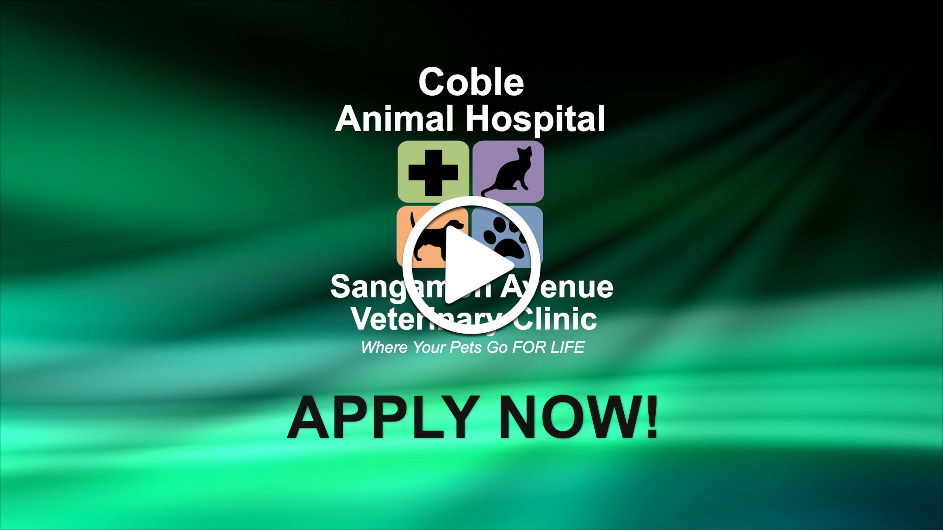 Watch our careers video for available job opening FT or PT Veterinarian - AAHA 72 years in Springfield, IL, USA