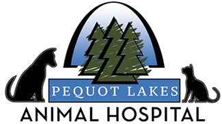 Watch the job video below to learn more about the career opening Video Unavailable at Pequot Lakes Animal Hospital in