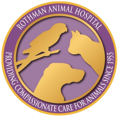Watch the job video below to learn more about the career opening Associate Veterinarian at Rothman Animal Hospital in Collingswood,  New Jersey,  USA