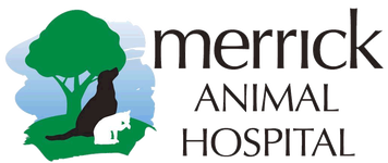 Watch the job video below to learn more about the career opening Associate Veterinarian in Western Chicago Suburb at Merrick Animal Hospital in Brookfield,   IL.  USA