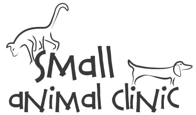 Watch the job video below to learn more about the career opening Video Not Found at Small Animal Clinic in