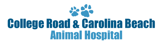 Watch the job video below to learn more about the career opening Full Time Veterinarian at College Road Animal Hospital in Wilmington,   NC,   USA