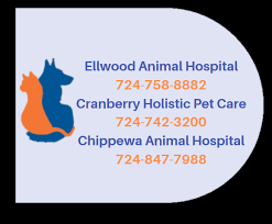 Watch the job video below to learn more about the career opening Rewarding Small Animal Opportunity at Ellwood Animal Hospital in Cranberry Twp,   Pennsylvania,   USA