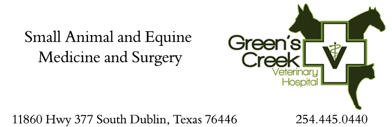 Watch the job video below to learn more about the career opening Join Green's Creek Veterinary Hospital at Green's Creek Veterinary Hospital in Stephenville,   TX