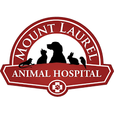Watch the job video below to learn more about the career opening Immediate Opening-Emergency Veterinarian -All Experience at Mount Laurel Animal Hospital in Mount Laurel,   NJ,   USA