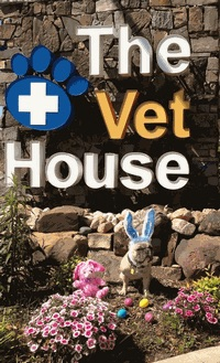 Watch the job video below to learn more about the career opening Veterinarian F/T P/T at The Vet House in RICHARDSON,   Texas