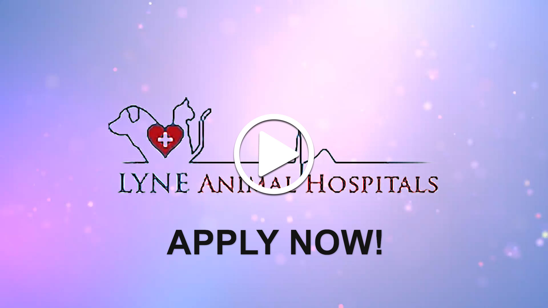 Watch our careers video for available job opening Full Time | Part Time Associate Veterinarian in Richmond, VA, USA