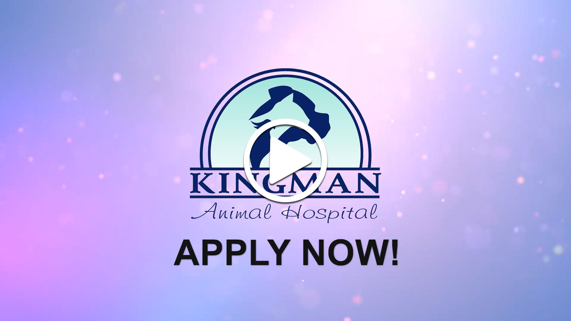 Watch our careers video for available job opening Associate Veterinarian in Kingman, AZ, USA