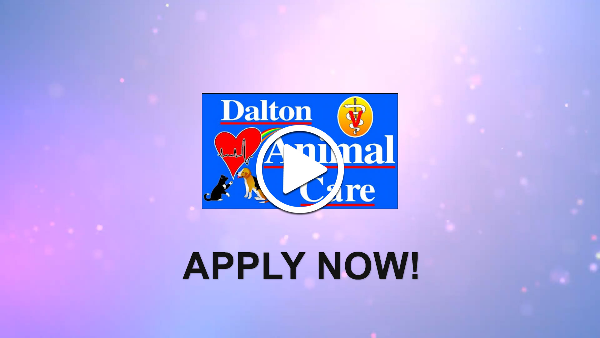 Watch our careers video for available job opening Associate Veterinarian in Dalton, GA, USA