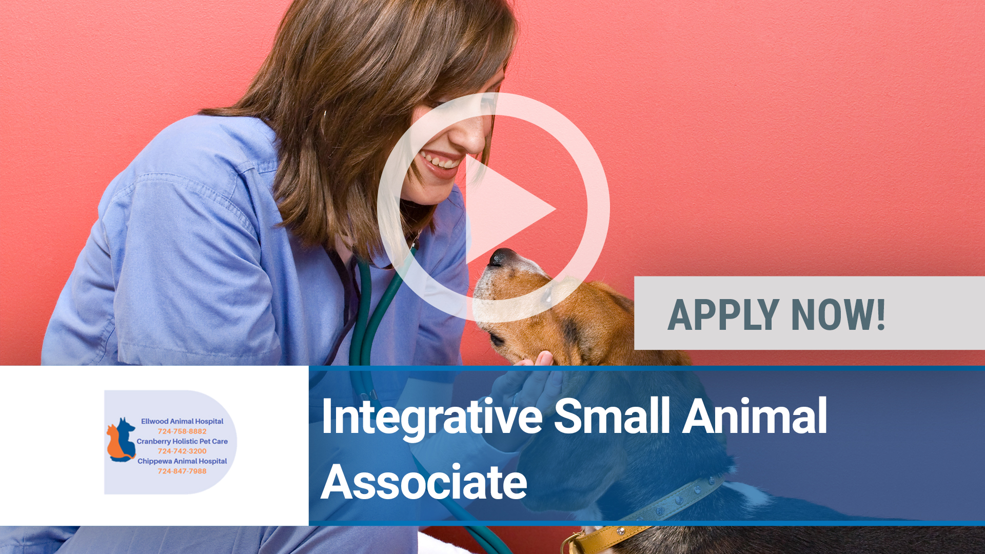 Watch our careers video for available job opening Rewarding Small Animal Opportunity in Cranberry Twp, Pennsylvania,