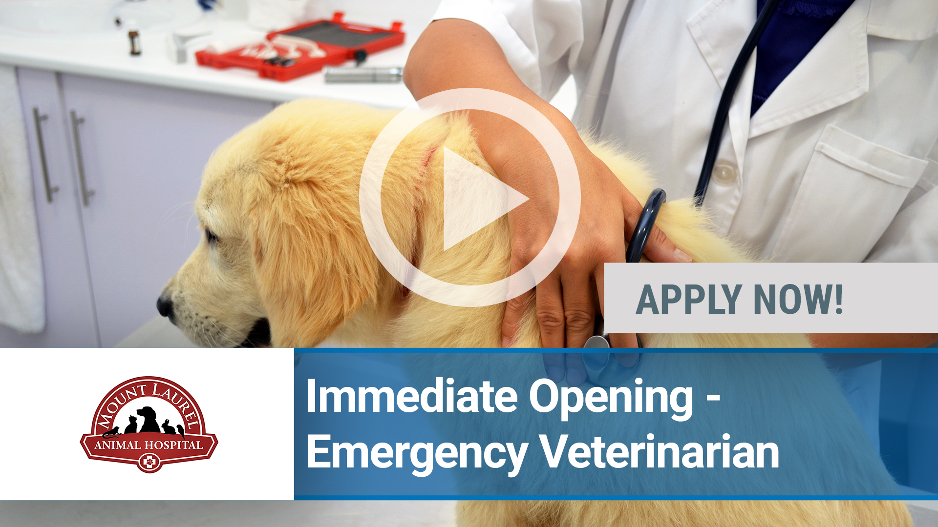 Watch our careers video for available job opening Immediate Opening-Emergency Veterinarian -All Exp in Mount Laurel, NJ, USA