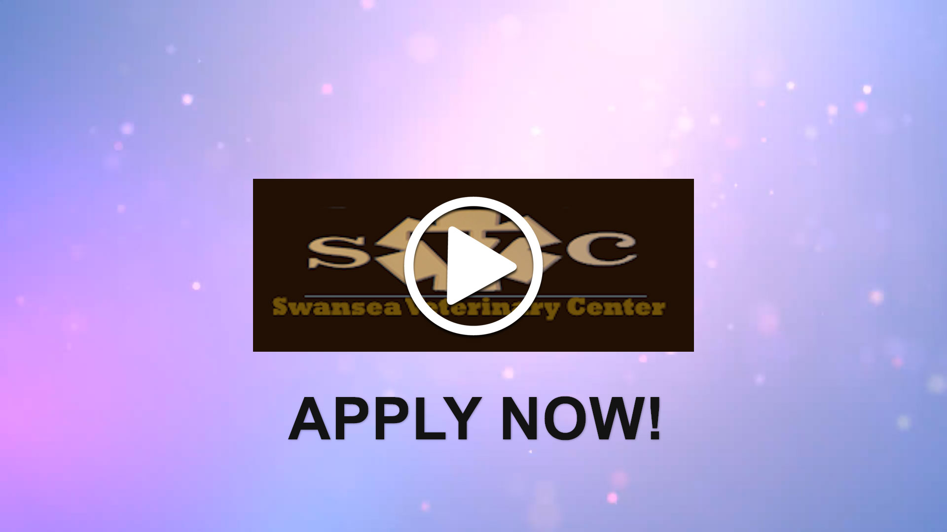Watch our careers video for available job opening Associate Veterinarian  in Swansea, MA, USA